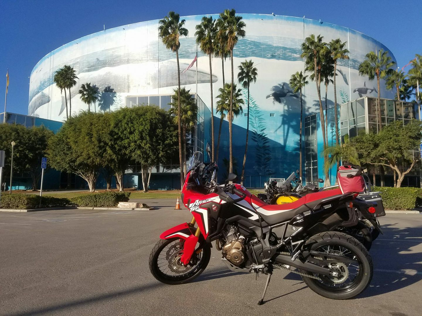Now Booking: Honda Africa Twin Rentals