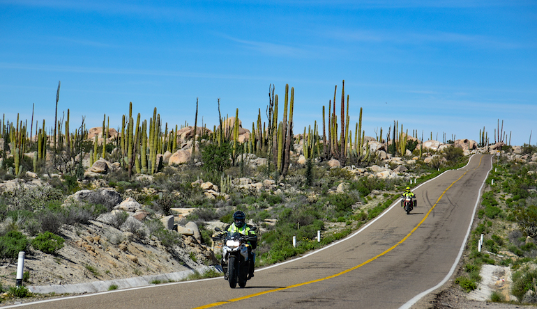 Reserve Your Spot For The Soundbound Baja Adventures – 2020 Northbound Dates Full
