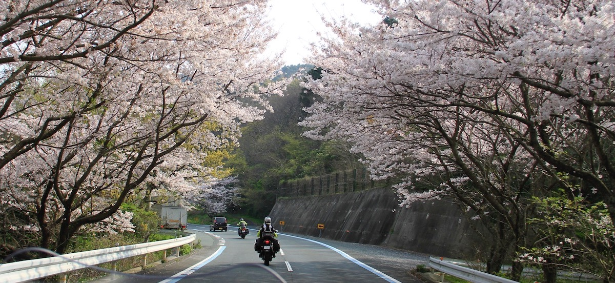 The Secret is Out About Riding in Japan